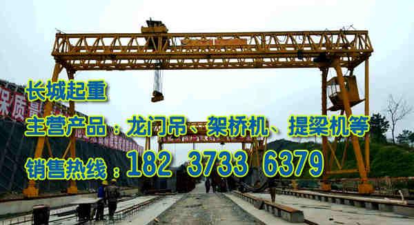 天津门式起重机厂家